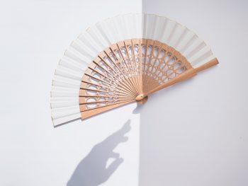 Minimalist fan